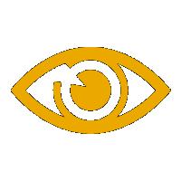 KIFRA Vision Icon
